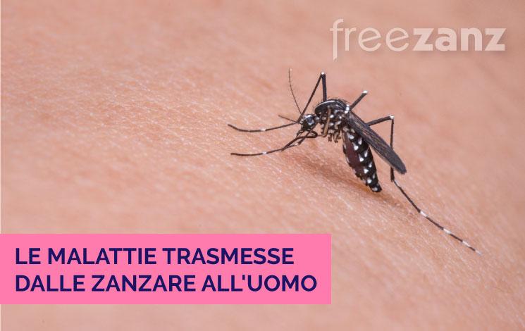 Malattie trasmesse dalle zanzare all'uomo