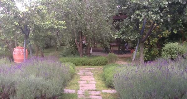 Parco in Residenza Privata, Bagno a Ripoli (FI)