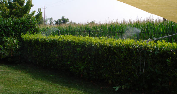 Residenza Privata, Lodi